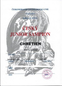 cesky-junior-sampion.jpg